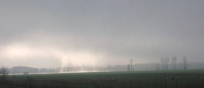 Fog-light driving to Eugene; angel card 004
