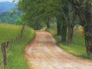 country_road_through_cades_cove_great_smoky_mountains_tennessee-300x225