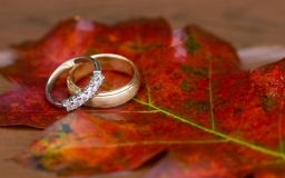wedding-rings-on-autumn-leaves-wallpaper-53228a0e7a051