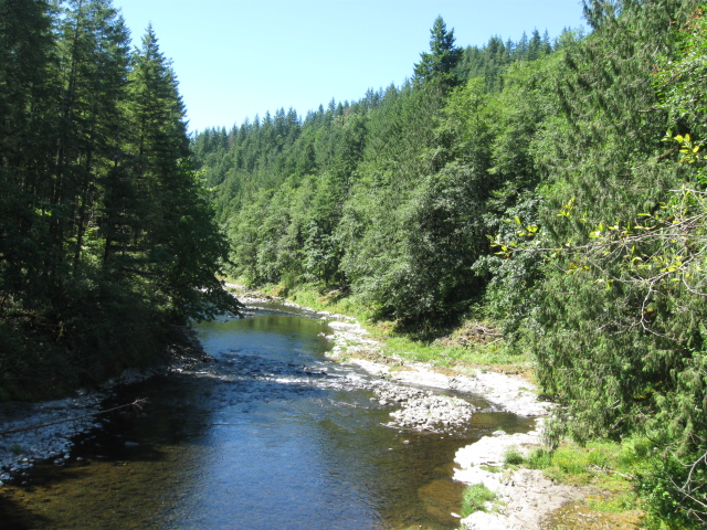 Tillamook Forest and Hwy 101 7-24-10 006