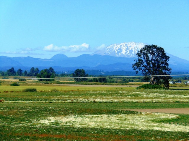 Sauvie Island and other 170