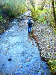 salmon-creek-in-fall-217