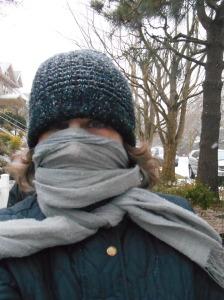 snowy-january-001