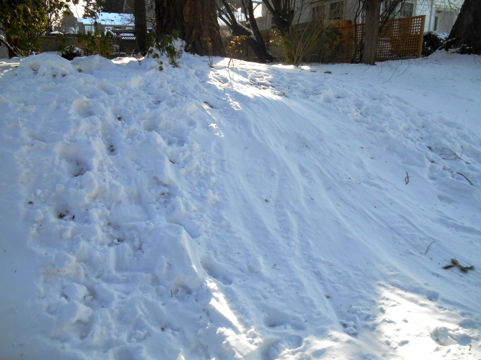 snowy-meanders-033