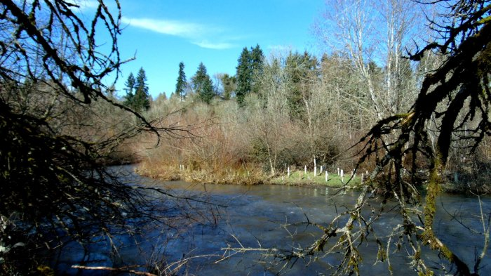 salmon-creek-meander-065