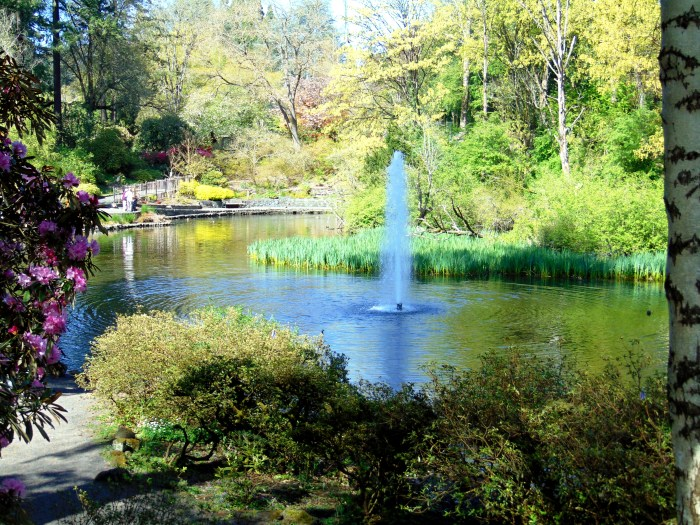 Crystal Springs spring! 073