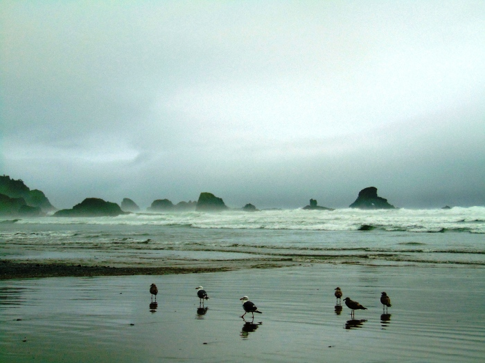 Cannon Beach-Astoria-Lg Beach, 5-17 083