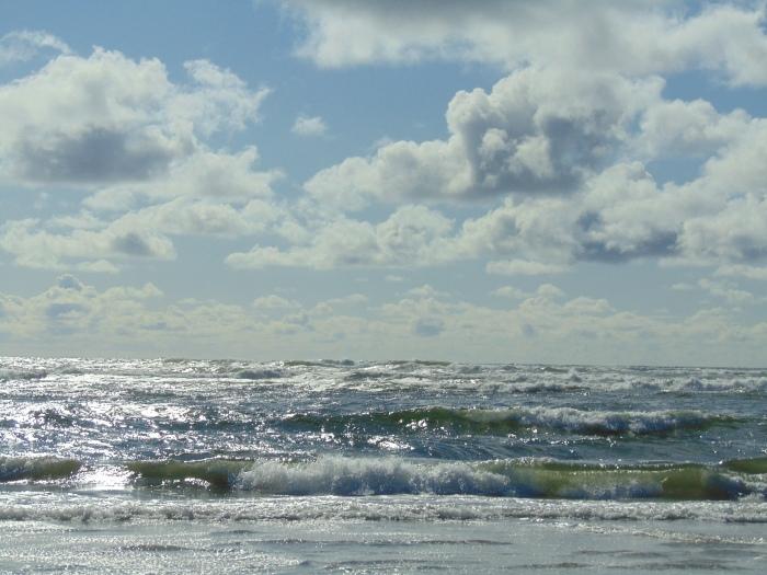 Cannon Beach-Astoria-Lg Beach, 5-17 481