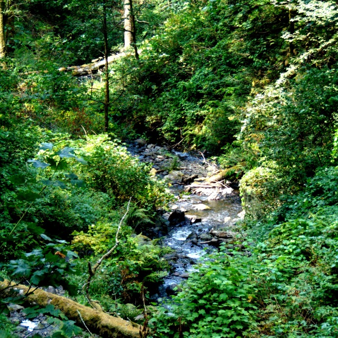 Columbia Gorge, Cascade Locks, misc 041