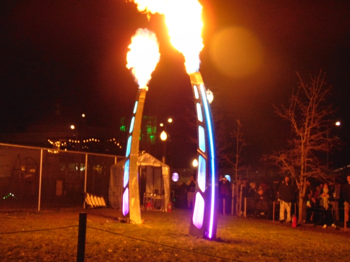 Winter Lights Festival and 110