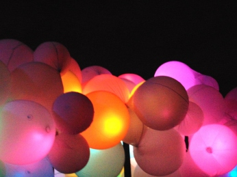 Winter Lights Festival and 224