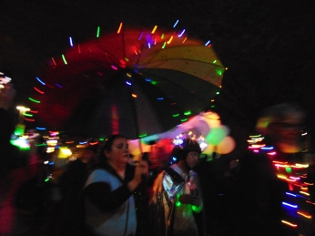 Winter Lights Festival and 245