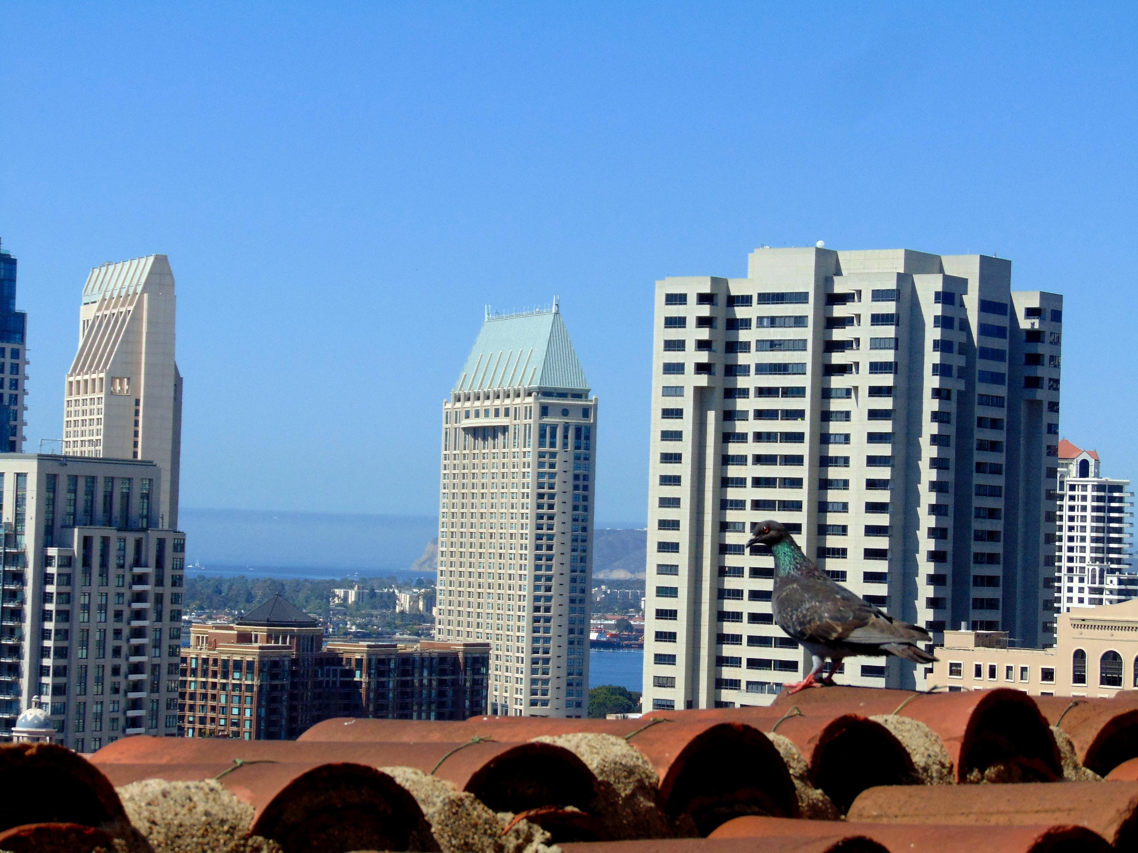 San Diego Day 1, 2 066