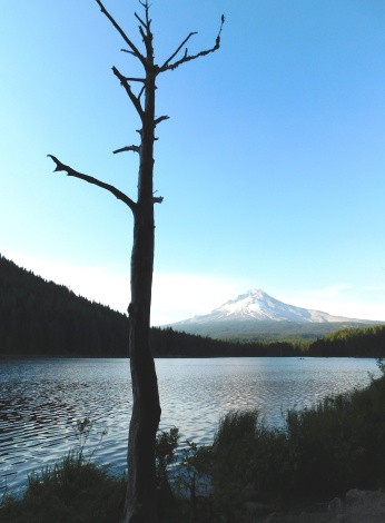 Trillium Lake, walks 298