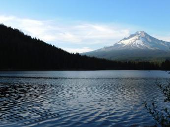 Trillium Lake, walks 300